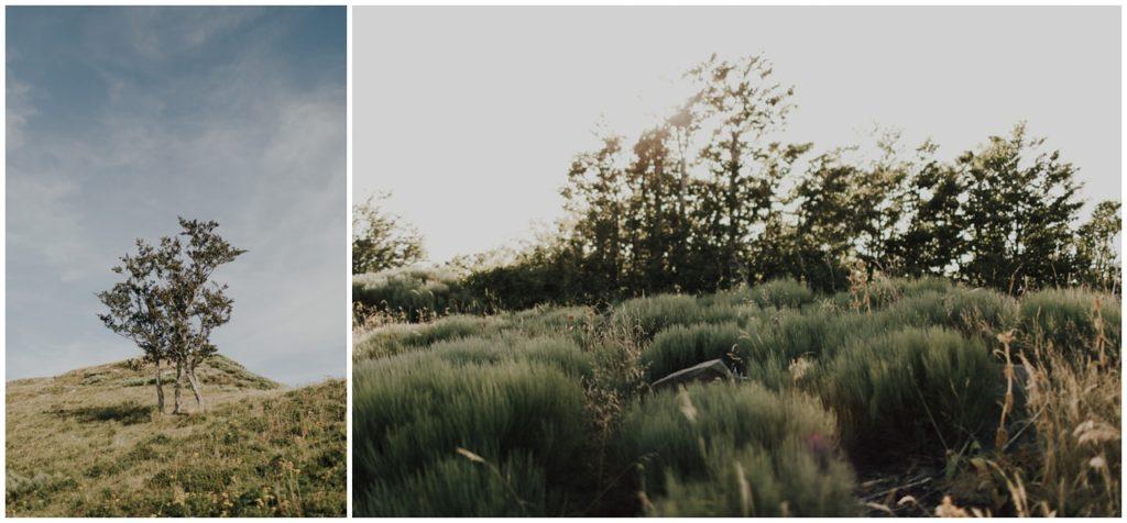 youmademydayphotography-baptiste-hauville-photographe-mariage-auvergne-wedding-photographer-elopement-photographer-auvergne_0012